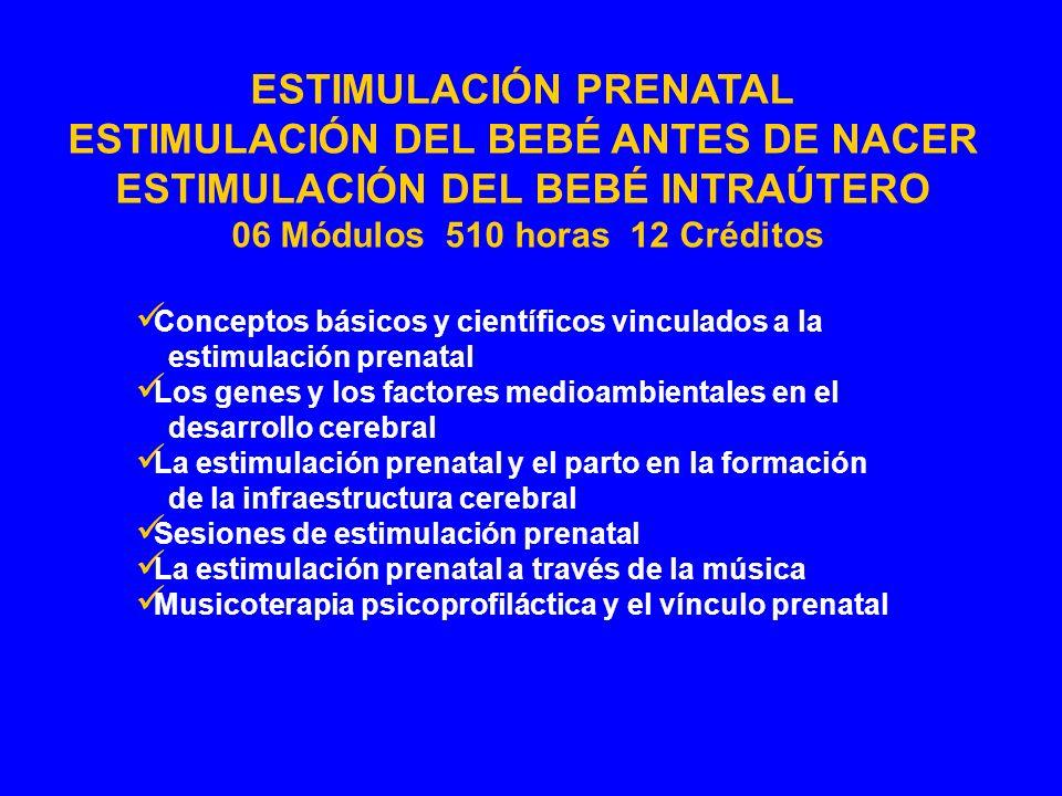 Conceptos básicos y científicos vinculados a la estimulación prenatal Los genes y los factores medioambientales en el desarrollo cerebral La estimulac