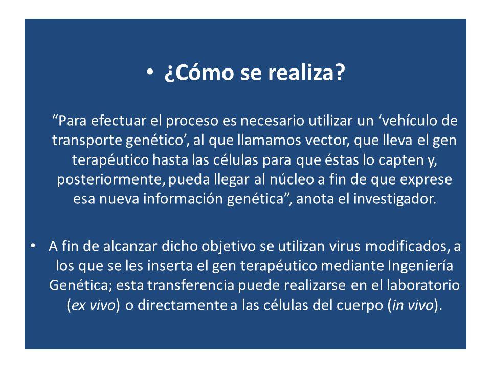 ¿Cómo se realiza? Para efectuar el proceso es necesario utilizar un vehículo de transporte genético, al que llamamos vector, que lleva el gen terapéut