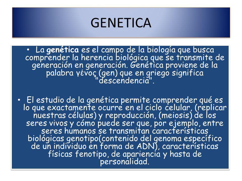 GENETICA La genética es el campo de la biología que busca comprender la herencia biológica que se transmite de generación en generación. Genética prov