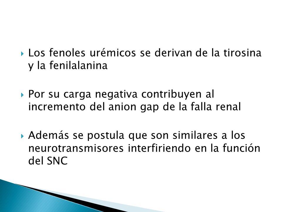 Los fenoles urémicos se derivan de la tirosina y la fenilalanina Por su carga negativa contribuyen al incremento del anion gap de la falla renal Además se postula que son similares a los neurotransmisores interfiriendo en la función del SNC