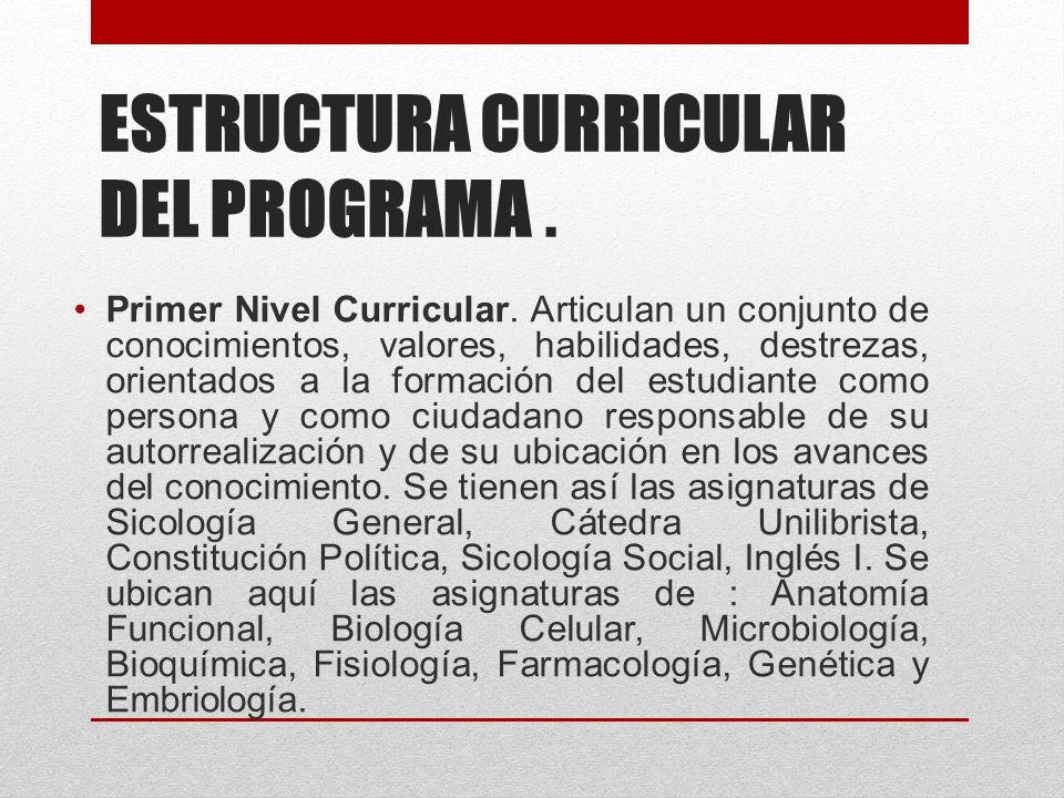 ESTRUCTURA CURRICULAR DEL PROGRAMA. Primer Nivel Curricular.