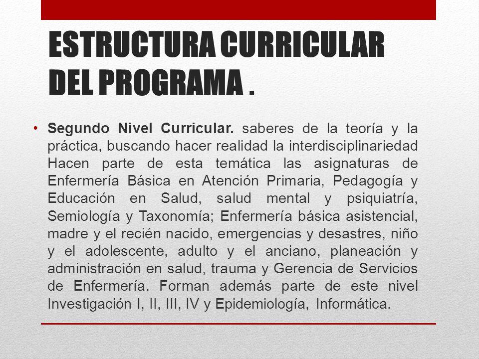 ESTRUCTURA CURRICULAR DEL PROGRAMA. Segundo Nivel Curricular.