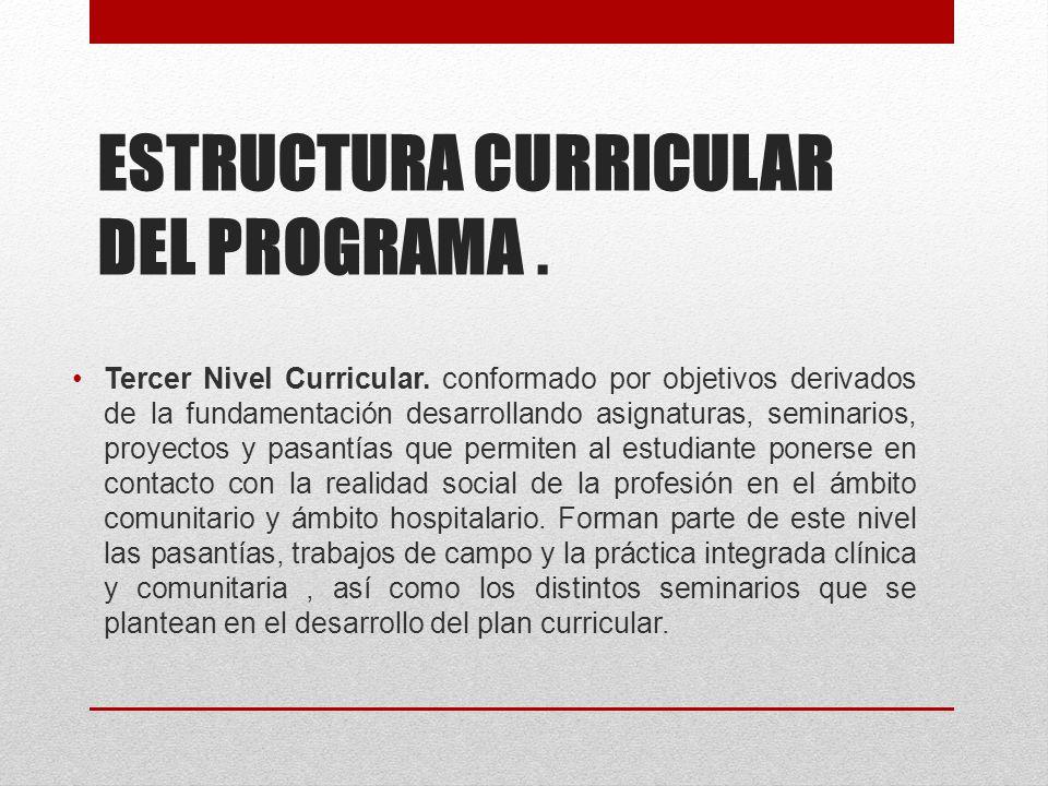 ESTRUCTURA CURRICULAR DEL PROGRAMA. Tercer Nivel Curricular.