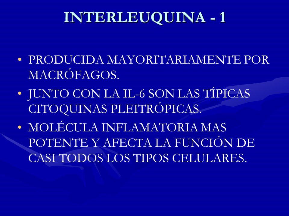 INTERLEUQUINA - 1 PRODUCIDA MAYORITARIAMENTE POR MACRÓFAGOS. JUNTO CON LA IL-6 SON LAS TÍPICAS CITOQUINAS PLEITRÓPICAS. MOLÉCULA INFLAMATORIA MAS POTE
