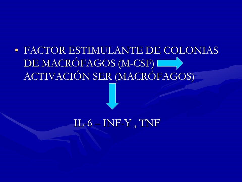 FACTOR ESTIMULANTE DE COLONIAS DE MACRÓFAGOS (M-CSF) ACTIVACIÓN SER (MACRÓFAGOS)FACTOR ESTIMULANTE DE COLONIAS DE MACRÓFAGOS (M-CSF) ACTIVACIÓN SER (M