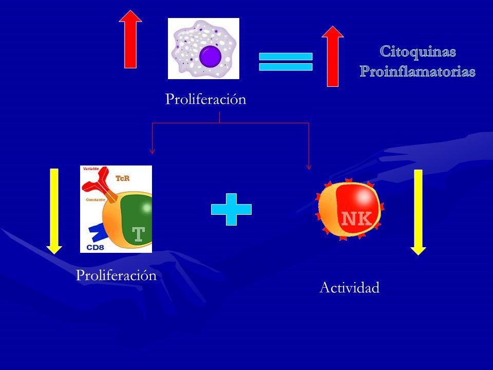 Proliferación Actividad Proliferación