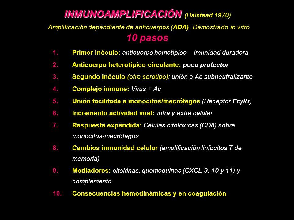 INMUNOAMPLIFICACIÓN INMUNOAMPLIFICACIÓN (Halstead 1970) Amplificación dependiente de anticuerpos (ADA). Demostrado in vitro 10 pasos 1.Primer inóculo: