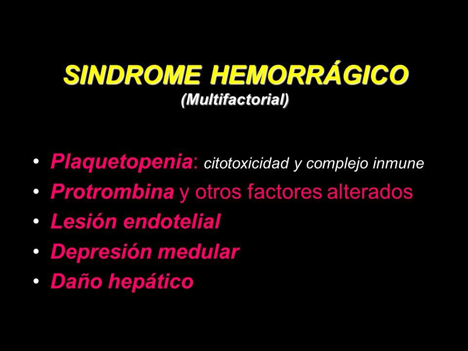 SINDROME HEMORRÁGICO (Multifactorial) Plaquetopenia: citotoxicidad y complejo inmune Protrombina y otros factores alterados Lesión endotelial Depresión medular Daño hepático