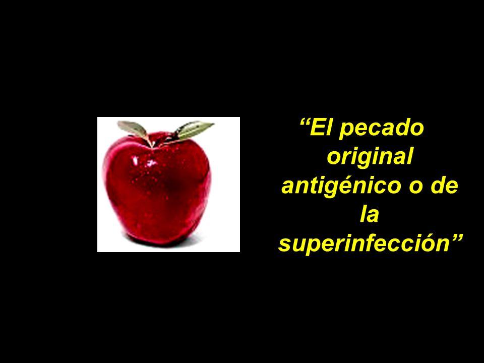 El pecado original antigénico o de la superinfección