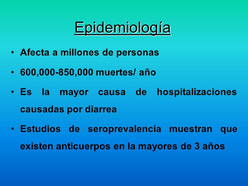 Epidemiología Afecta a millones de personas 600,000-850,000 muertes/ año Es la mayor causa de hospitalizaciones causadas por diarrea Estudios de serop