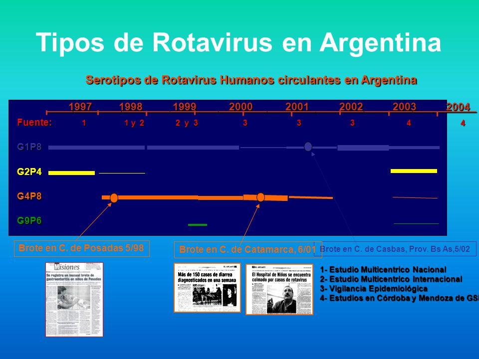 Tipos de Rotavirus en Argentina Fuente: 1 1 y 2 2 y 3 3 3 3 4 4 G1P8G2P4G4P8G9P6 Brote en C. de Posadas 5/98 Brote en C. de Casbas, Prov. Bs As,5/02 S