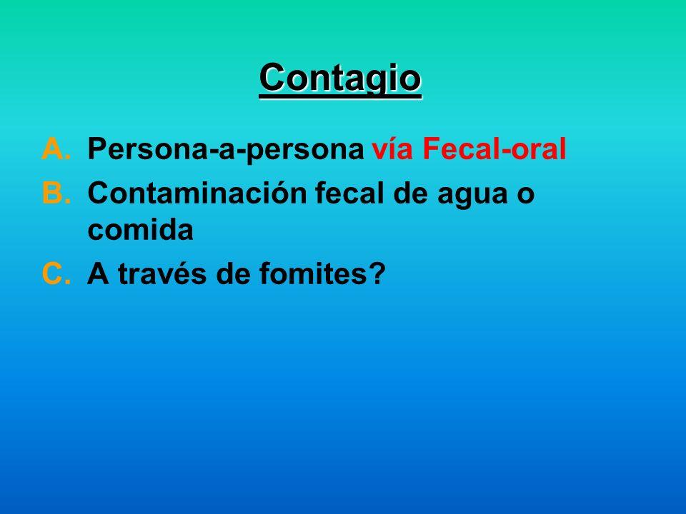 Contagio A.Persona-a-persona vía Fecal-oral B.Contaminación fecal de agua o comida C.A través de fomites?