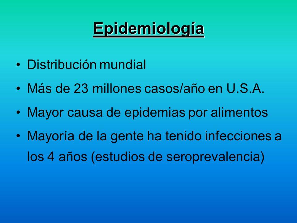 Epidemiología Distribución mundial Más de 23 millones casos/año en U.S.A. Mayor causa de epidemias por alimentos Mayoría de la gente ha tenido infecci