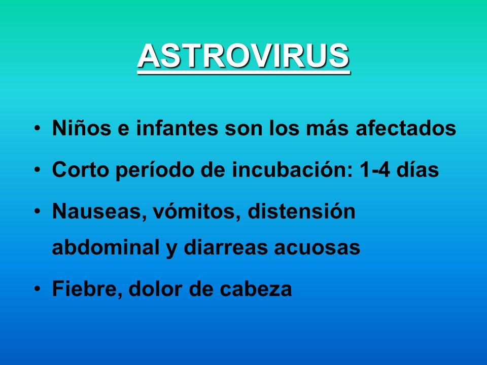 ASTROVIRUS Niños e infantes son los más afectados Corto período de incubación: 1-4 días Nauseas, vómitos, distensión abdominal y diarreas acuosas Fieb