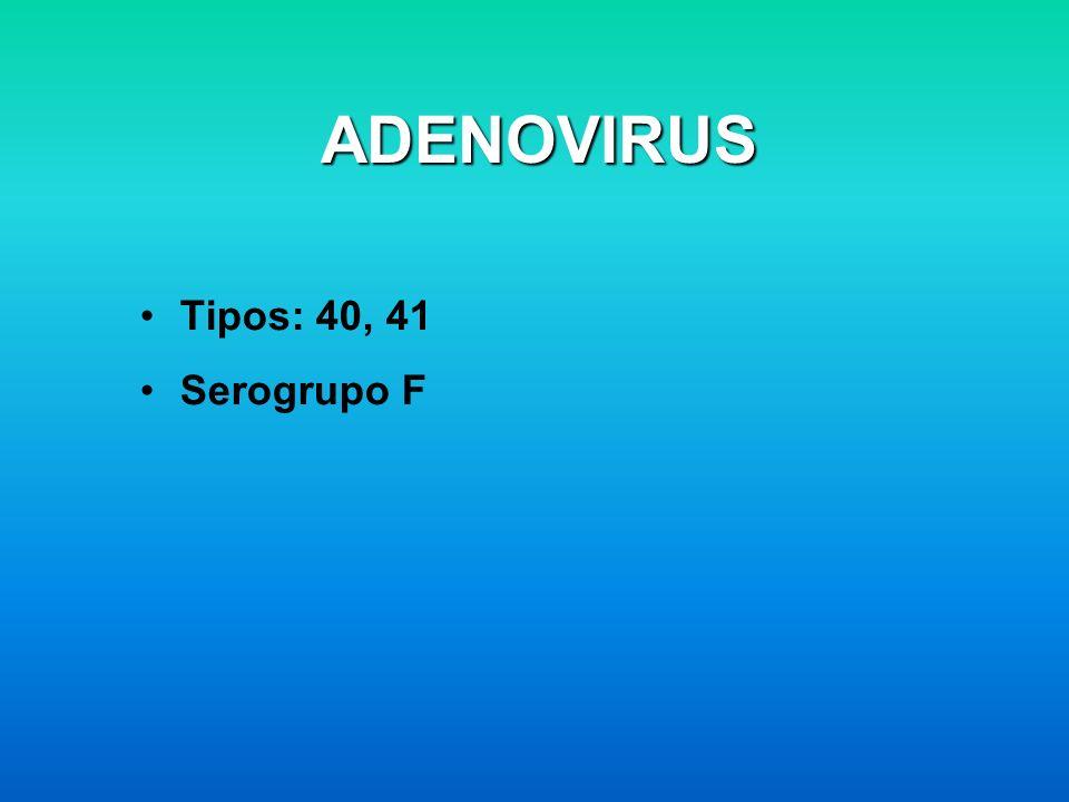 ADENOVIRUS Tipos: 40, 41 Serogrupo F