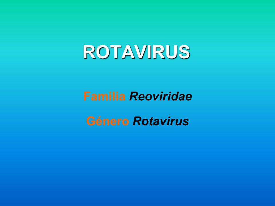 ROTAVIRUS Familia Reoviridae Género Rotavirus