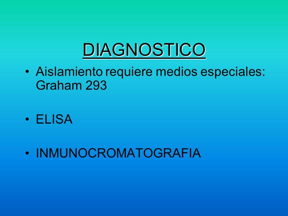 DIAGNOSTICO Aislamiento requiere medios especiales: Graham 293 ELISA INMUNOCROMATOGRAFIA