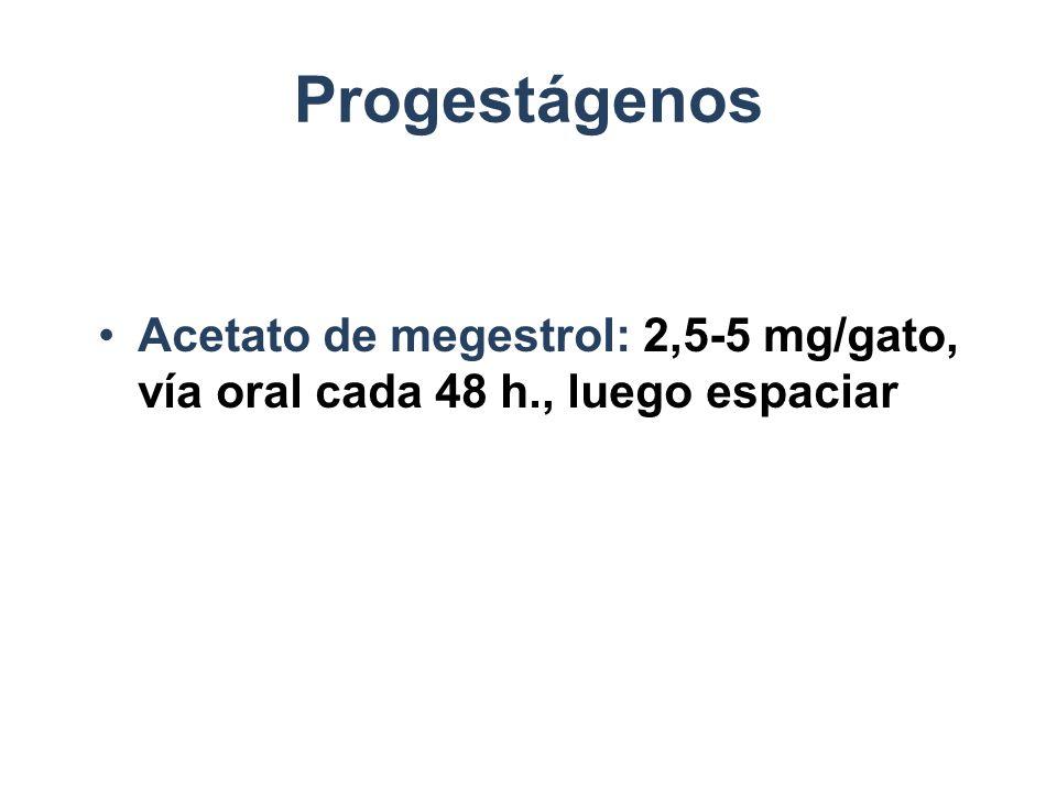 Progestágenos Acetato de megestrol: 2,5-5 mg/gato, vía oral cada 48 h., luego espaciar