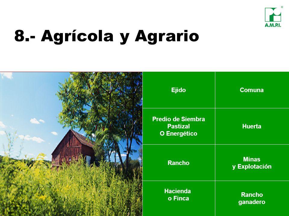 8.- Agrícola y Agrario EjidoComuna Predio de Siembra Pastizal O Energético Huerta Hacienda o Finca Rancho ganadero Minas y Explotación Rancho