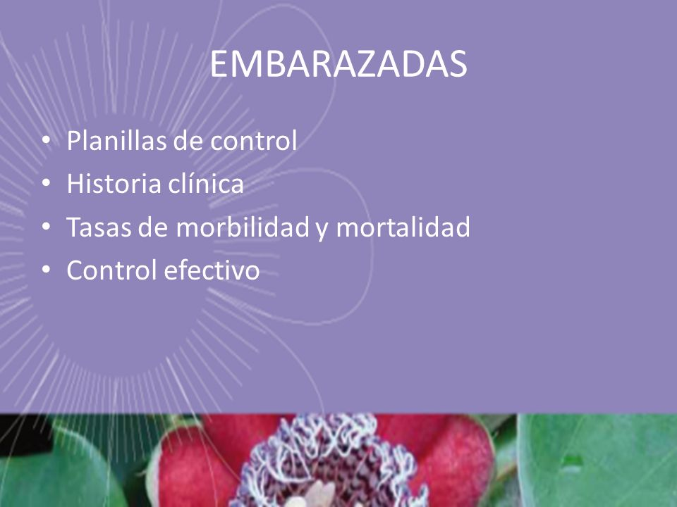 EMBARAZADAS Planillas de control Historia clínica Tasas de morbilidad y mortalidad Control efectivo