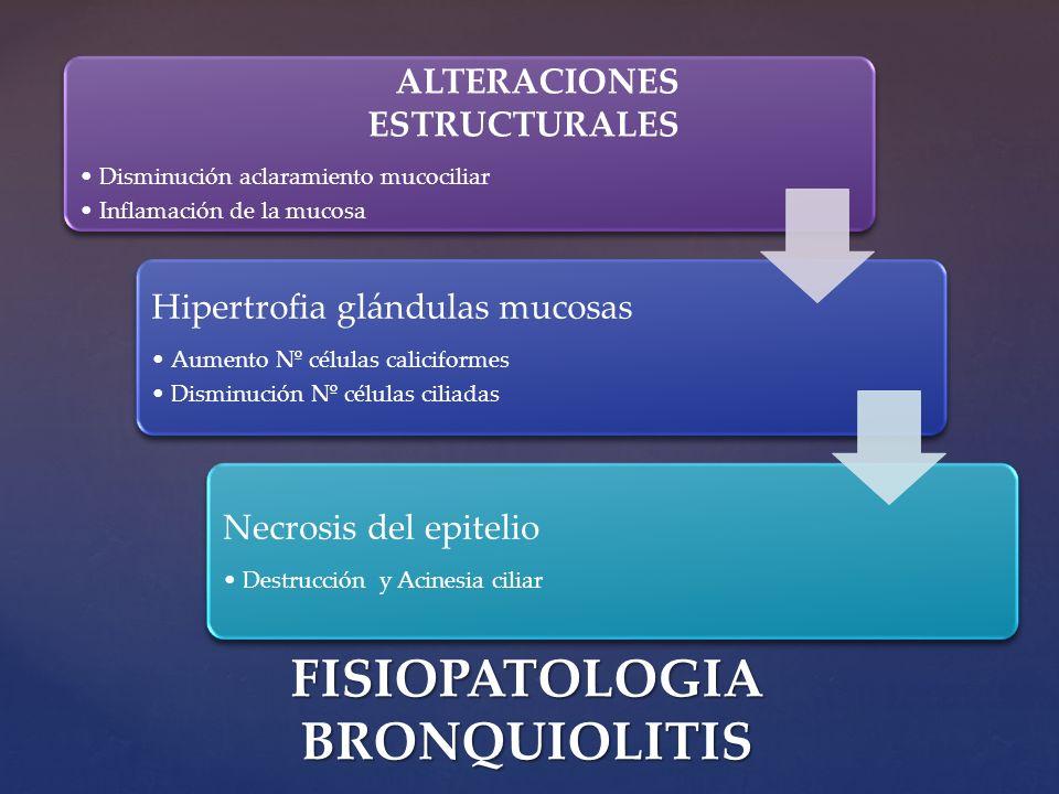 ALTERACIONES ESTRUCTURALES Disminución aclaramiento mucociliar Inflamación de la mucosa Hipertrofia glándulas mucosas Aumento Nº células caliciformes