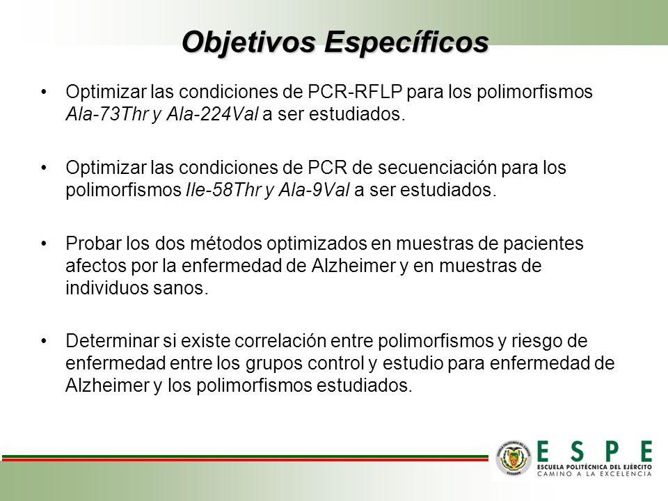 Optimizar las condiciones de PCR-RFLP para los polimorfismos Ala-73Thr y Ala-224Val a ser estudiados. Optimizar las condiciones de PCR de secuenciació