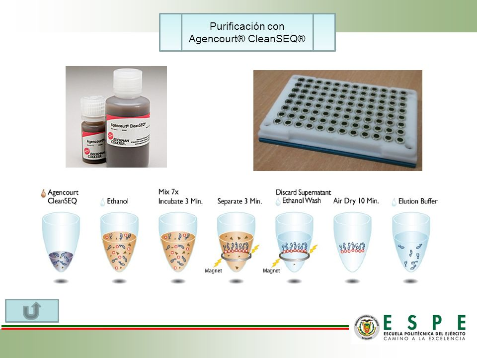 Purificación con Agencourt® CleanSEQ®