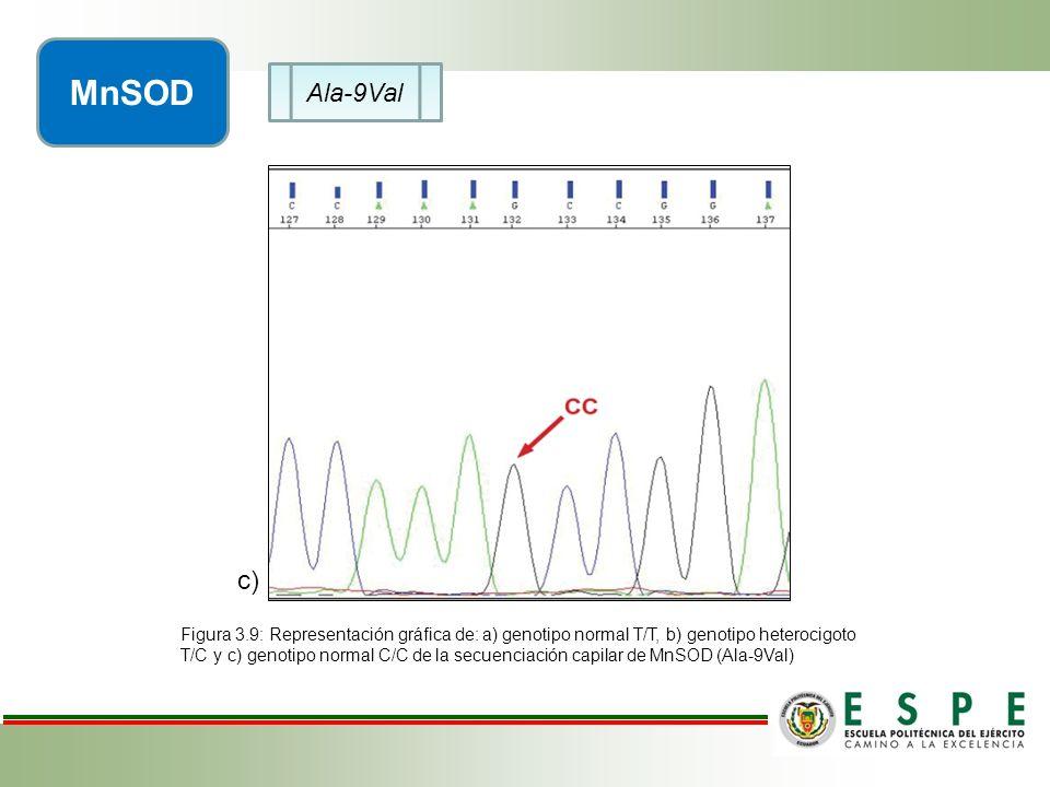 Ala-9Val MnSOD c) Figura 3.9: Representación gráfica de: a) genotipo normal T/T, b) genotipo heterocigoto T/C y c) genotipo normal C/C de la secuencia