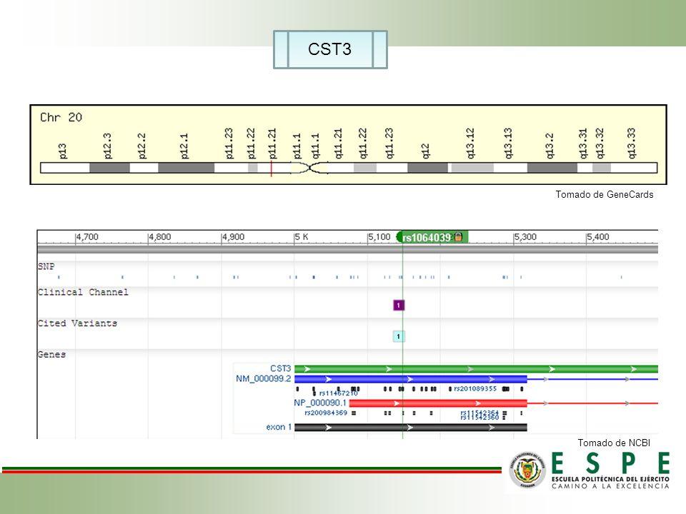 CST3 Tomado de GeneCards Tomado de NCBI