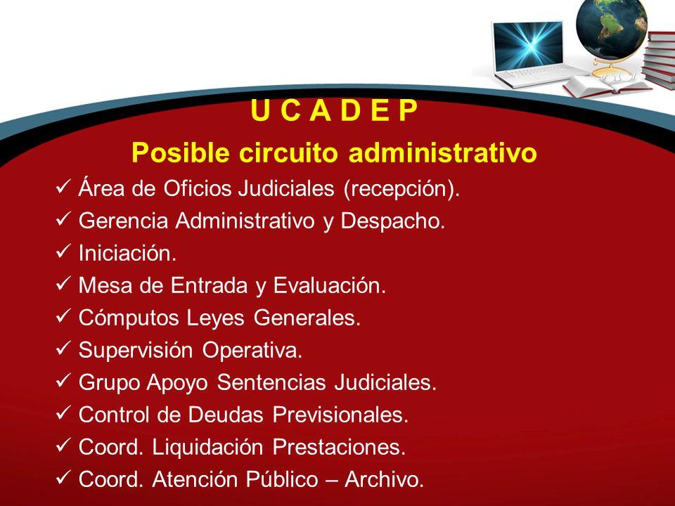 U C A D E P Posible circuito administrativo Área de Oficios Judiciales (recepción). Gerencia Administrativo y Despacho. Iniciación. Mesa de Entrada y