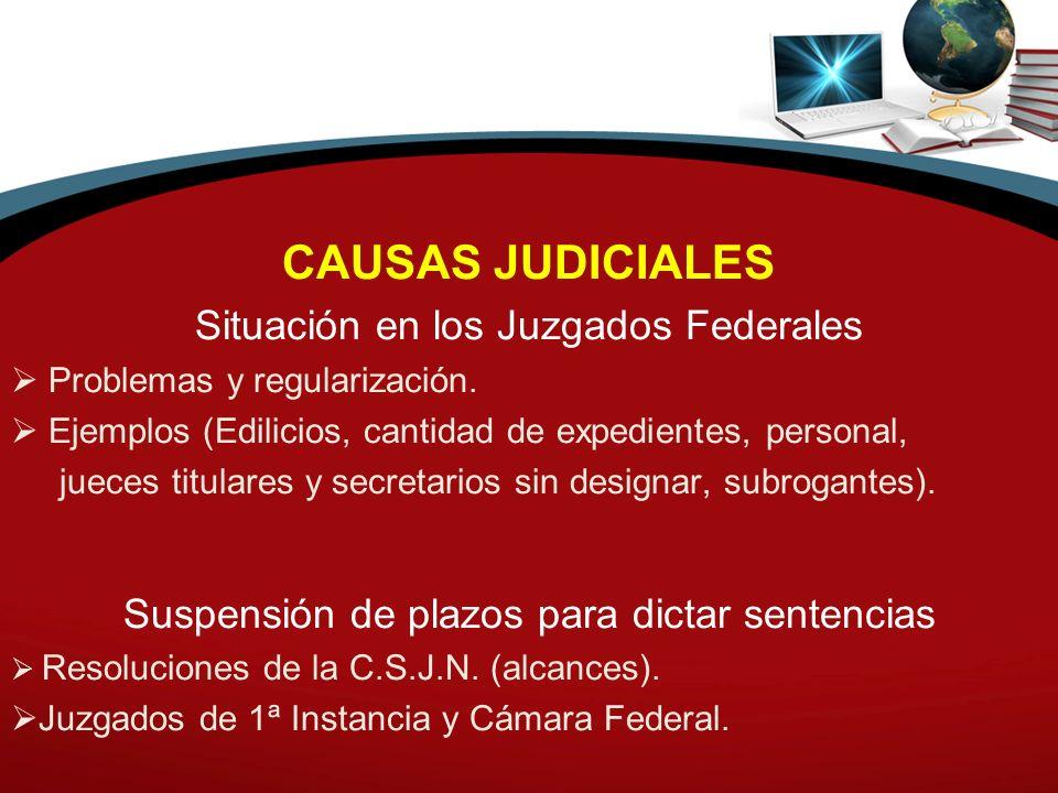 CAUSAS JUDICIALES Situación en los Juzgados Federales Problemas y regularización. Ejemplos (Edilicios, cantidad de expedientes, personal, jueces titul