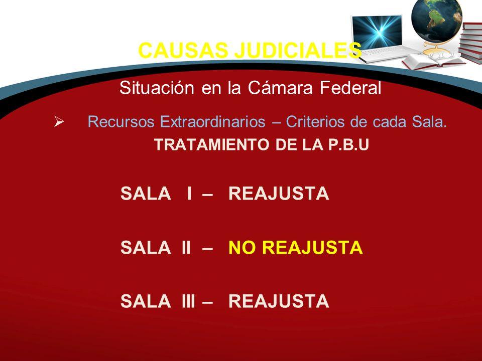 CAUSAS JUDICIALES Situación en la Cámara Federal Recursos Extraordinarios – Criterios de cada Sala. TRATAMIENTO DE LA P.B.U SALA I – REAJUSTA SALA II