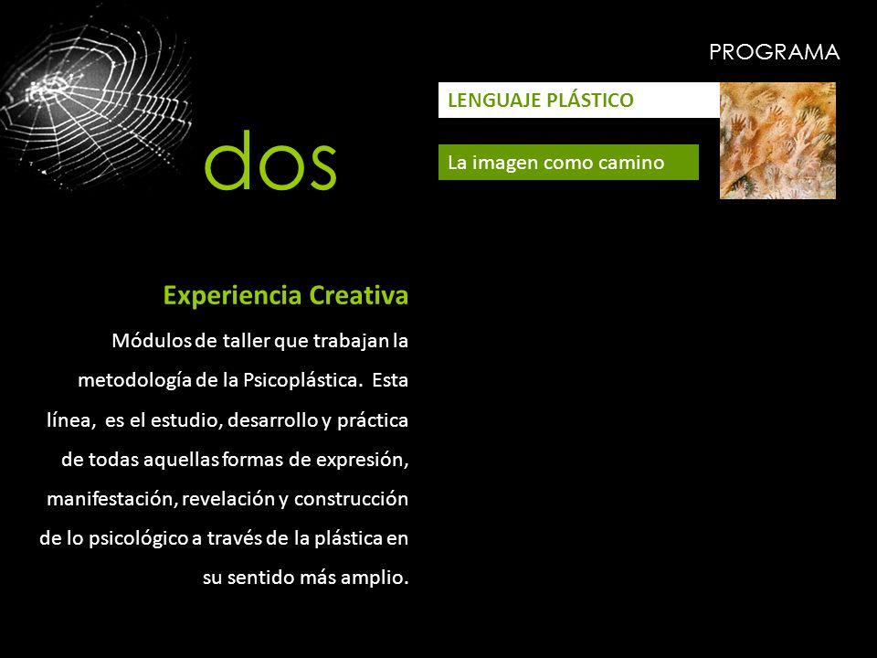 PROGRAMA LENGUAJE PLÁSTICO La imagen como camino Experiencia Creativa Módulos de taller que trabajan la metodología de la Psicoplástica. Esta línea, e