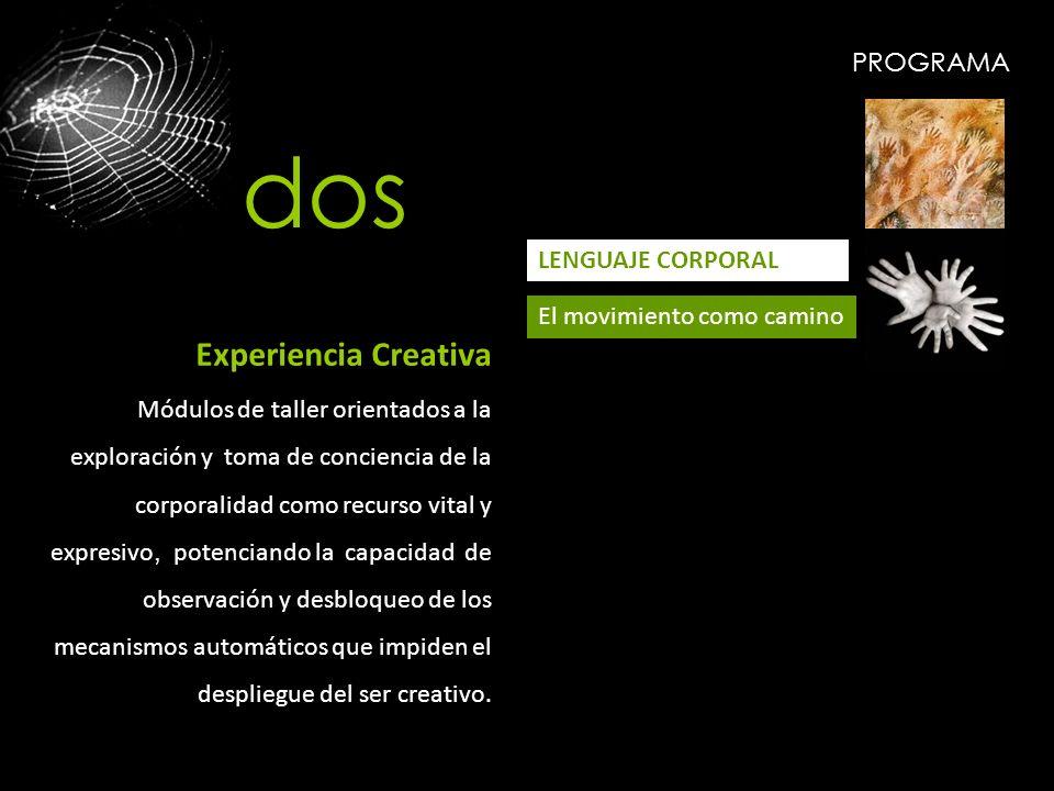 PROGRAMA LENGUAJE CORPORAL El movimiento como camino Experiencia Creativa Módulos de taller orientados a la exploración y toma de conciencia de la cor