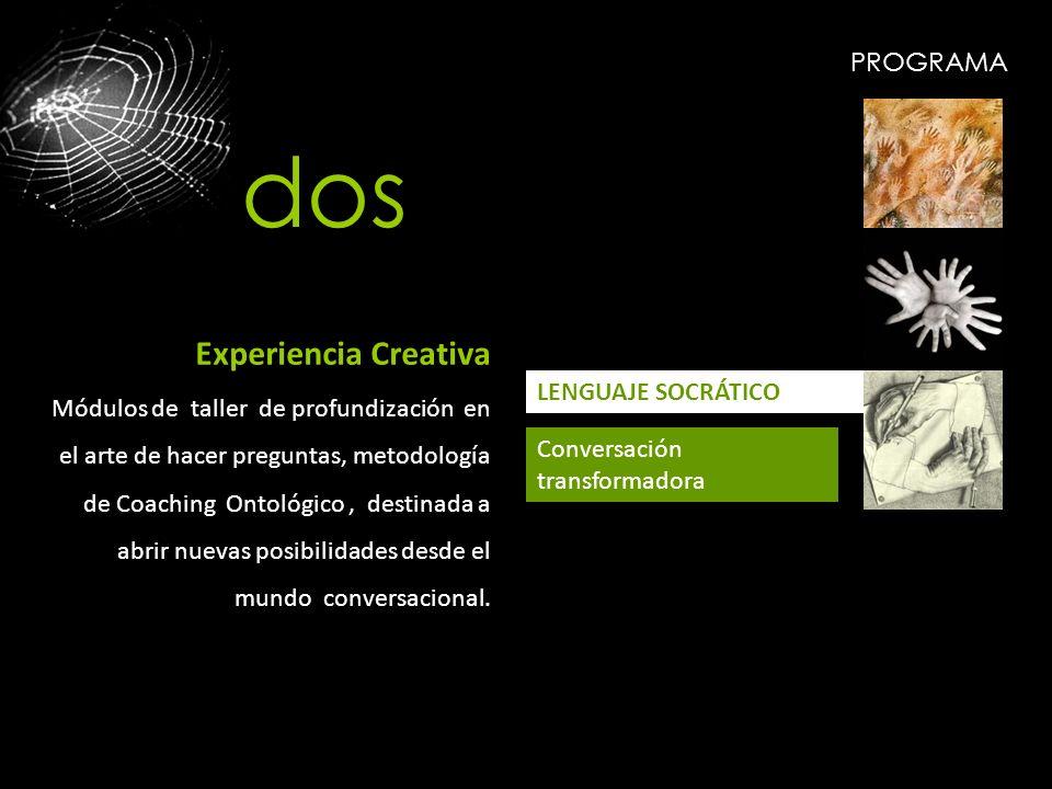 PROGRAMA LENGUAJE SOCRÁTICO Conversación transformadora Experiencia Creativa Módulos de taller de profundización en el arte de hacer preguntas, metodo