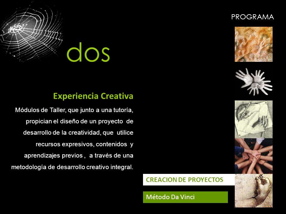 PROGRAMA CREACION DE PROYECTOS Método Da Vinci Experiencia Creativa Módulos de Taller, que junto a una tutoría, propician el diseño de un proyecto de
