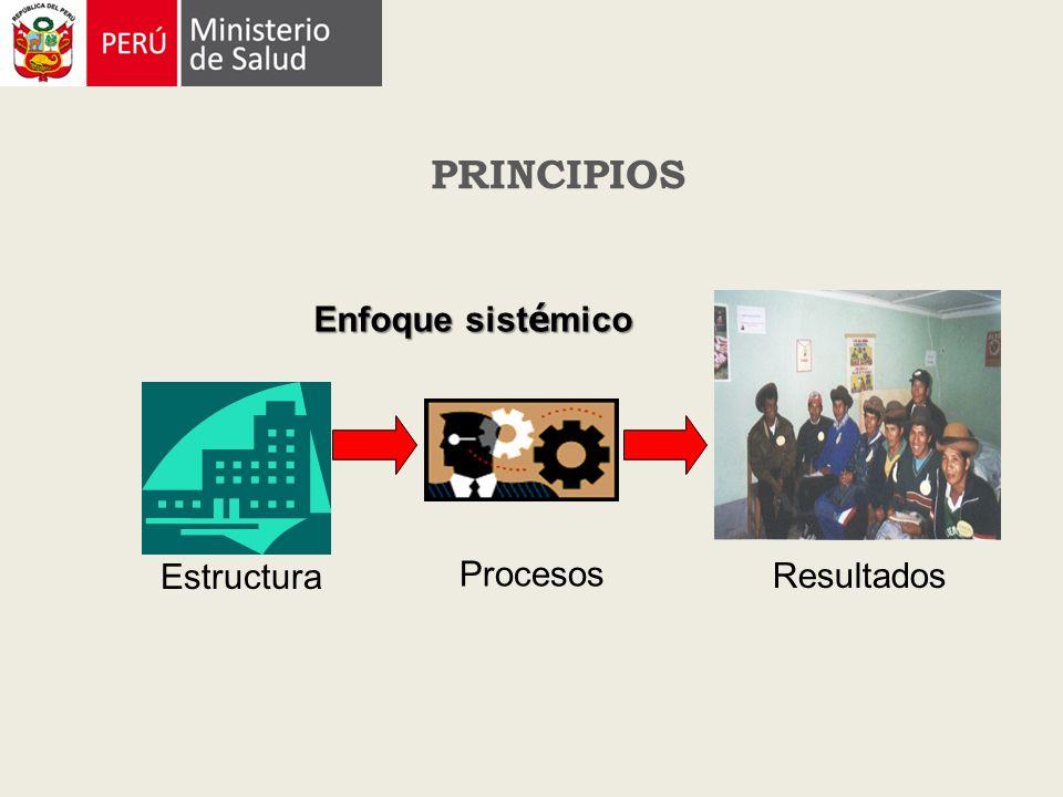 Enfoque sist é mico Estructura Procesos Resultados PRINCIPIOS