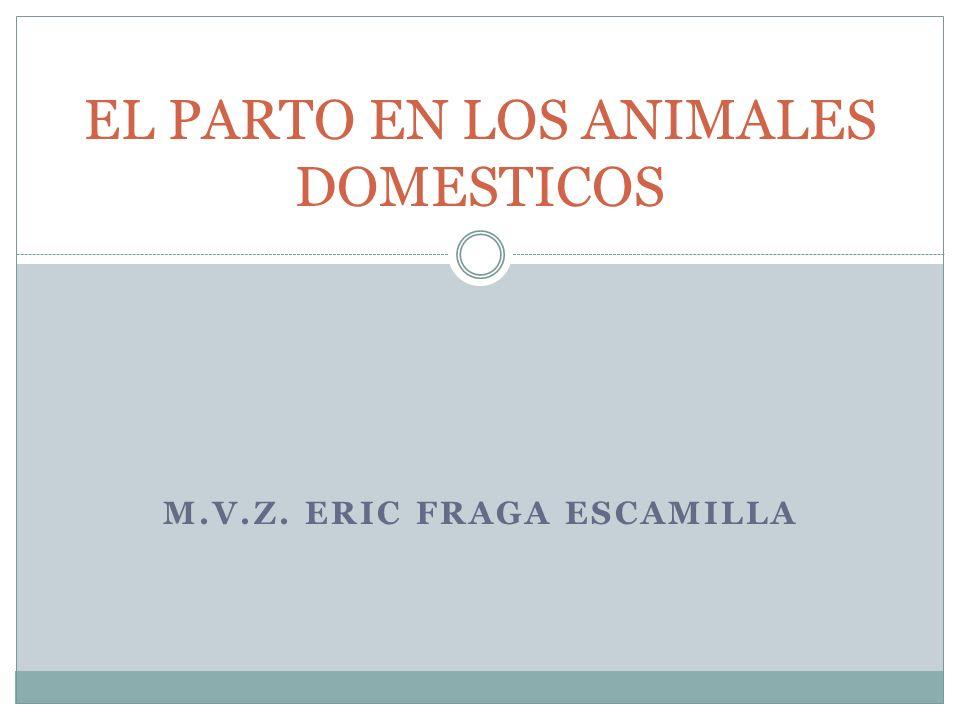 M.V.Z. ERIC FRAGA ESCAMILLA EL PARTO EN LOS ANIMALES DOMESTICOS