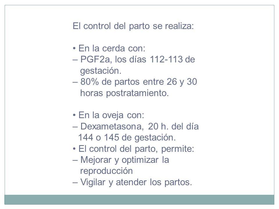 El control del parto se realiza: En la cerda con: – PGF2a, los días 112-113 de gestación. – 80% de partos entre 26 y 30 horas postratamiento. En la ov