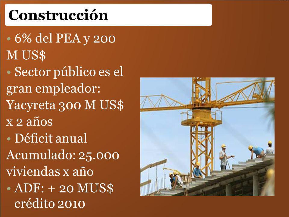 6% del PEA y 200 M US$ Sector público es el gran empleador: Yacyreta 300 M US$ x 2 años Déficit anual Acumulado: 25.000 viviendas x año ADF: + 20 MUS$