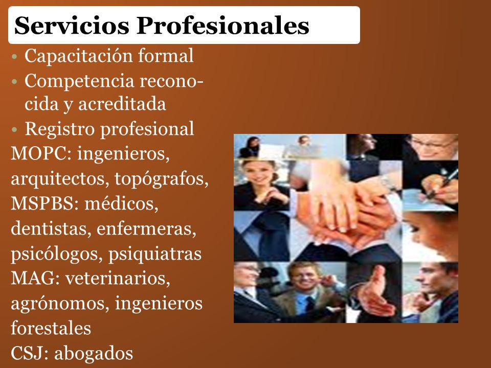 Capacitación formal Competencia recono- cida y acreditada Registro profesional MOPC: ingenieros, arquitectos, topógrafos, MSPBS: médicos, dentistas, e
