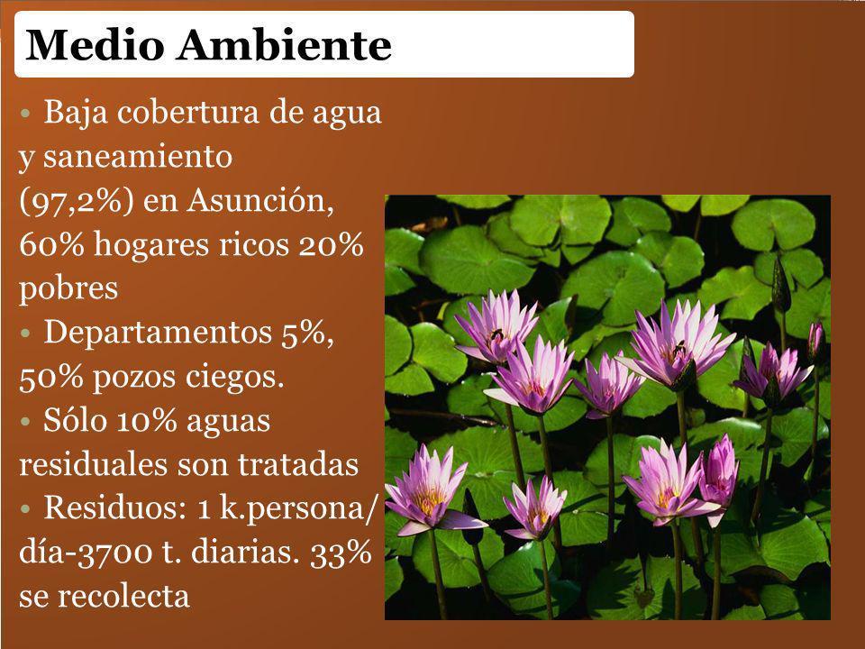 Baja cobertura de agua y saneamiento (97,2%) en Asunción, 60% hogares ricos 20% pobres Departamentos 5%, 50% pozos ciegos. Sólo 10% aguas residuales s