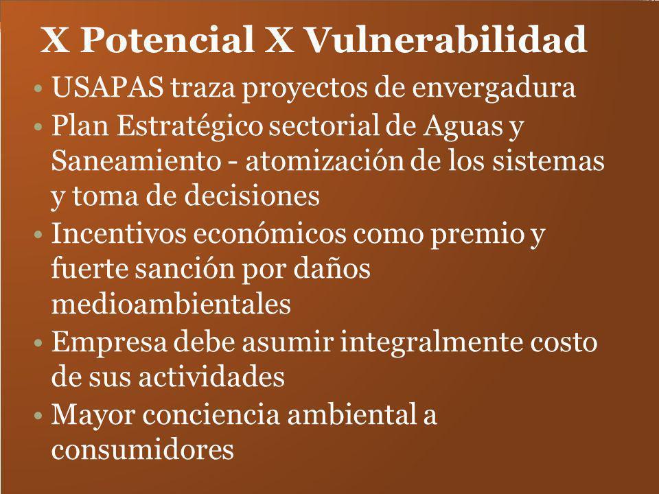 X Potencial X Vulnerabilidad USAPAS traza proyectos de envergadura Plan Estratégico sectorial de Aguas y Saneamiento - atomización de los sistemas y t