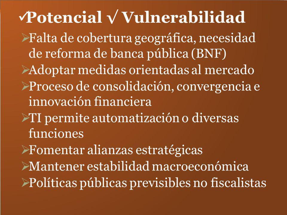 Potencial Vulnerabilidad Falta de cobertura geográfica, necesidad de reforma de banca pública (BNF) Adoptar medidas orientadas al mercado Proceso de c