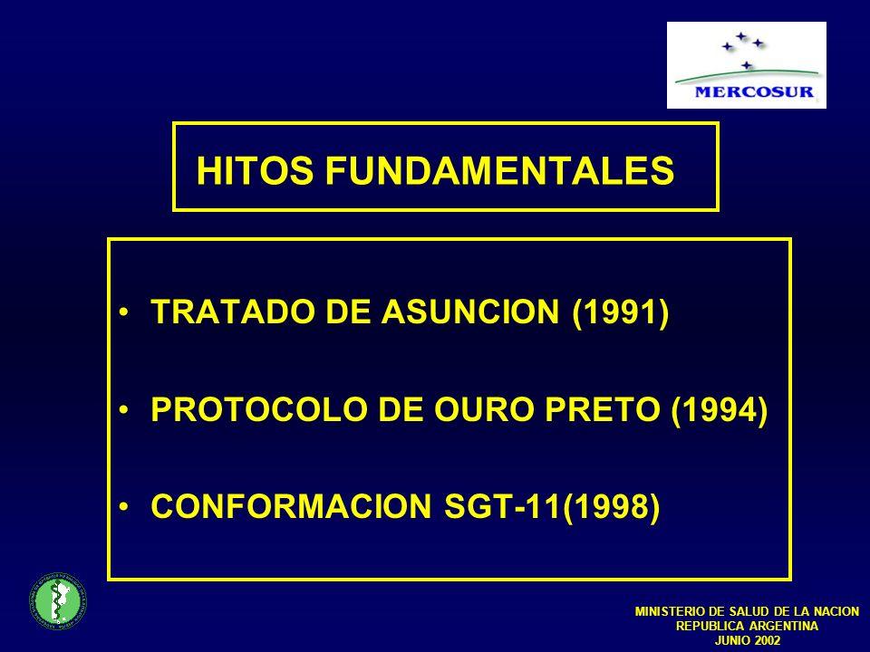HITOS FUNDAMENTALES TRATADO DE ASUNCION (1991) PROTOCOLO DE OURO PRETO (1994) CONFORMACION SGT-11(1998) MINISTERIO DE SALUD DE LA NACION REPUBLICA ARGENTINA JUNIO 2002