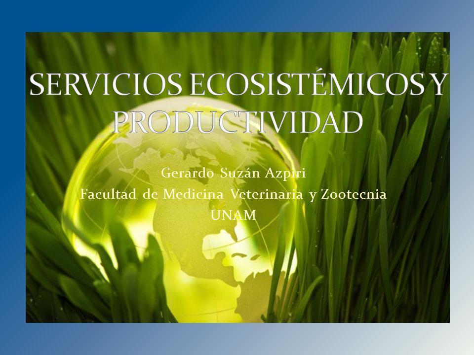 SERVICIOS AMBIENTALES O ECOSISTÉMICOS: Condiciones y procesos por los que los ecosistemas naturales, y las especies que los constituyen, sostienen la vida humana (Daily 1997)