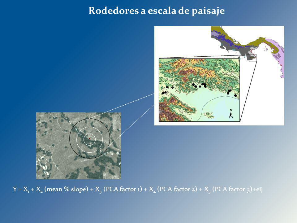 Y = X 1 + X 2 (mean % slope) + X 3 (PCA factor 1) + X 4 (PCA factor 2) + X 5 (PCA factor 3)+eij Rodedores a escala de paisaje