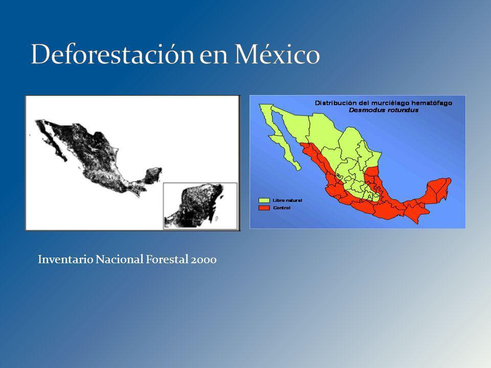 Inventario Nacional Forestal 2000
