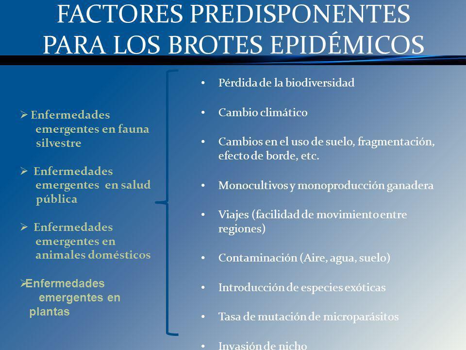 FACTORES PREDISPONENTES PARA LOS BROTES EPIDÉMICOS Enfermedades emergentes en fauna silvestre Enfermedades emergentes en salud pública Enfermedades em