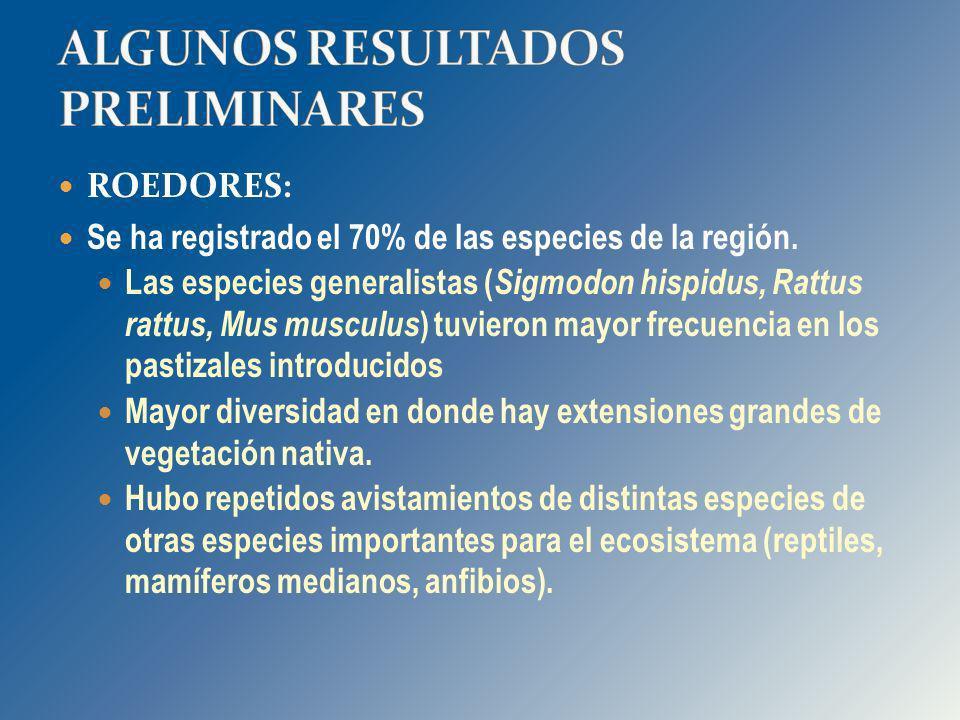 ROEDORES: Se ha registrado el 70% de las especies de la región. Las especies generalistas ( Sigmodon hispidus, Rattus rattus, Mus musculus ) tuvieron